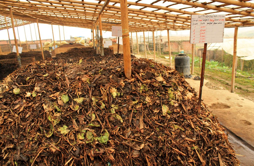 Getting Down and Dirt With Organic Compost